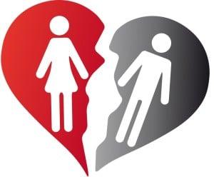 Bolonka Zwetna gerät in Not durch Scheidung