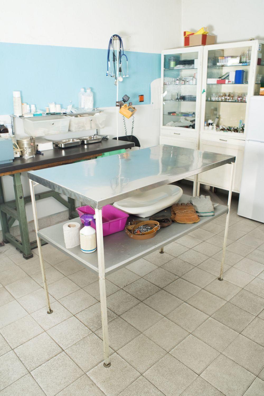 Tierarzt Bolonka Zwetna krank