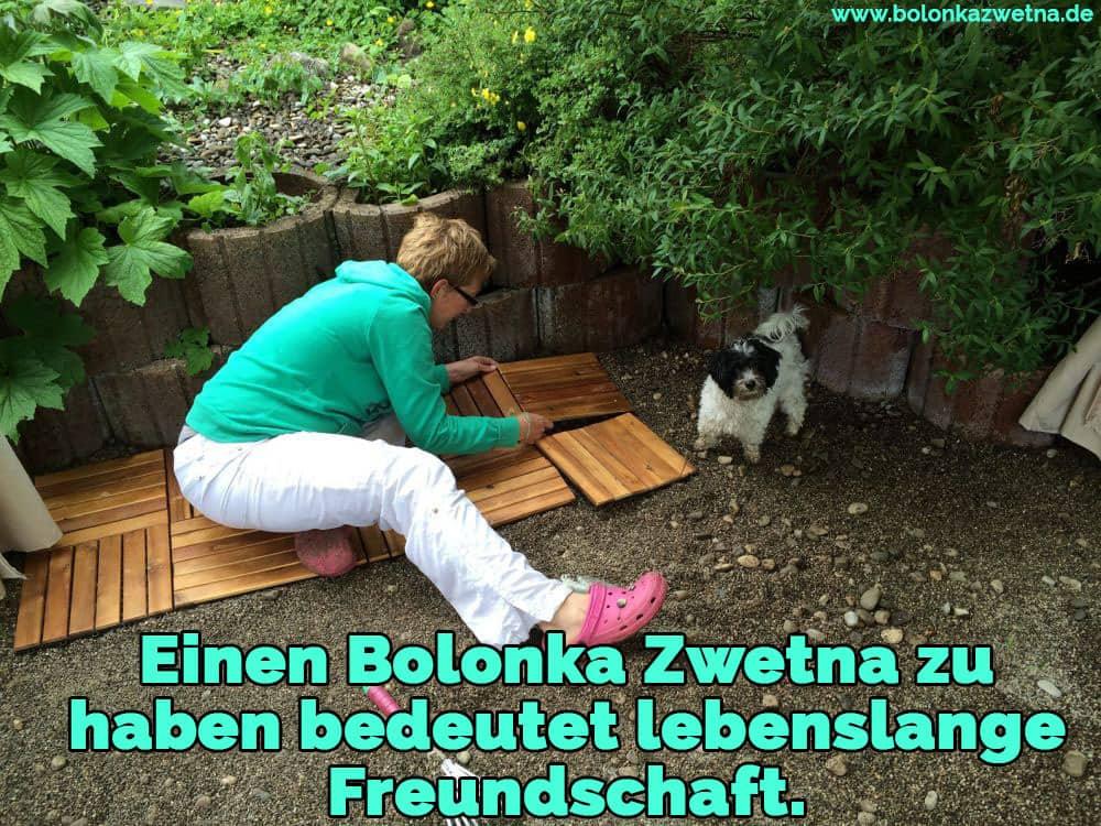 Eine Frau und ihre Bolonka Zwetna den Garten Pflege
